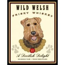 Dog Welsh Terrier Wild Welsh Frisky Whiskey 8x10 Art Print