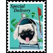Dog Pekingese Special Delivery 8x10 Art Print