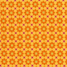 Tangerine Mini Flowers Puppy Belly Band