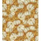 Autumn White & Orange Pumpkins Puppy Belly Band