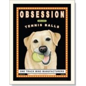 Dog Golden Labrador - Obsession