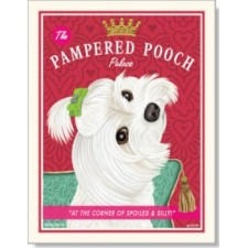 Dog Maltese - Pampered Pooch
