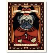 Dog Pug - Obstinance