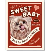 Dog Yorkshire Terrier - Sweet Baby 8x10 Print