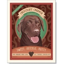 Dog Chocolate Labrador - Chocolate Charmer